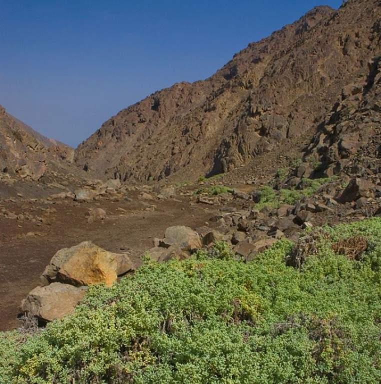 Reserva Nacional La Chimba, a 15 kilómetros de Antofagasta