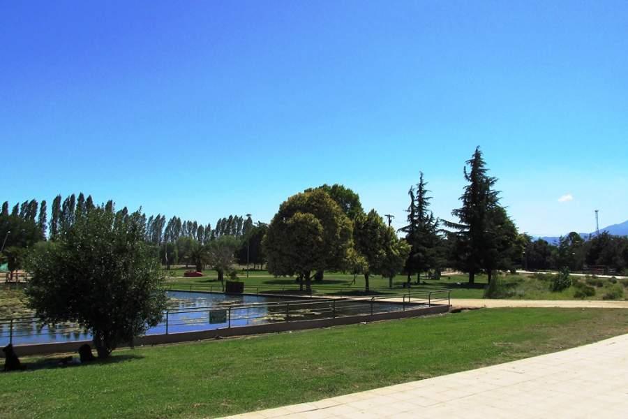 Relájate en el Parque Comunal Rancagua
