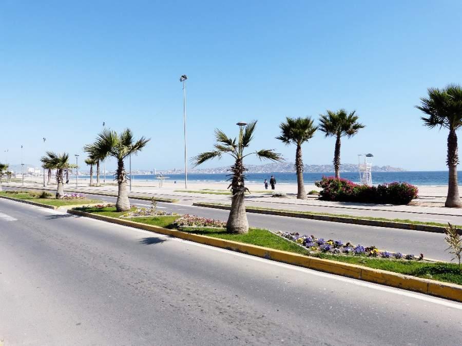 Camina a la orilla del mar y disfruta de la brisa en Coquimbo