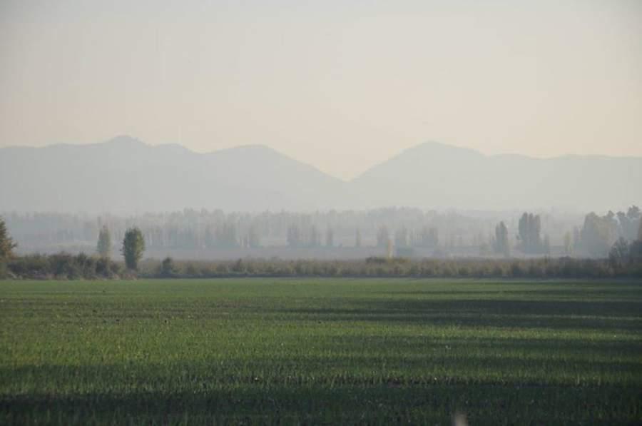 Pirque es parte del valle del Maipo, la zona vitivinícola más antigua y reconocida de Chile