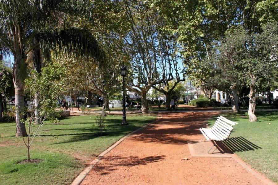 Senderos en la Plaza 12 de octubre