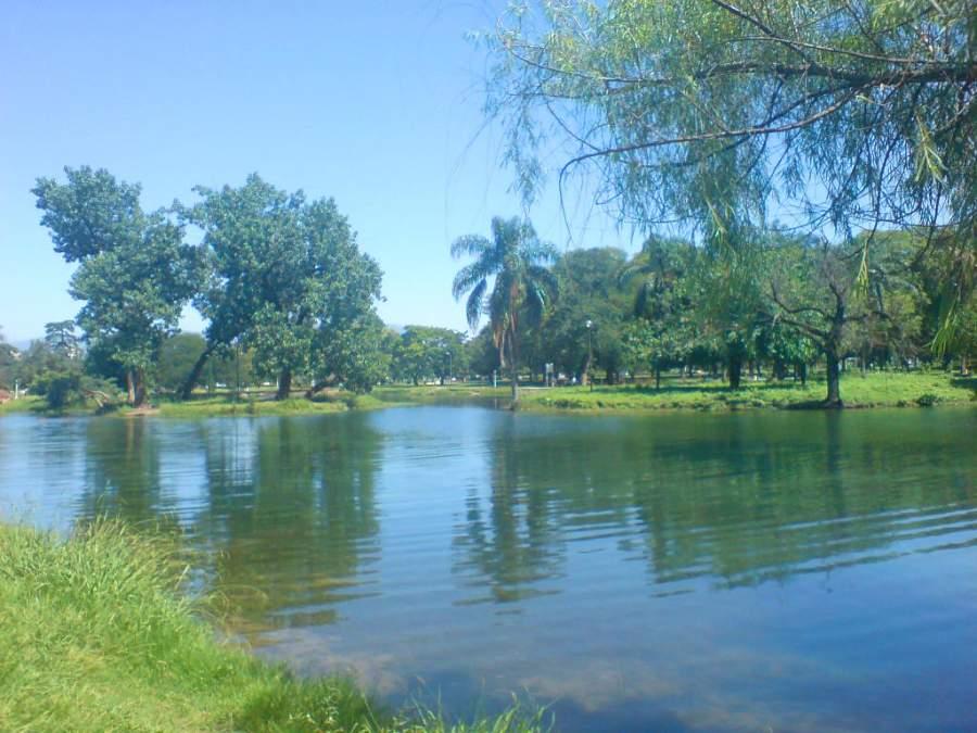 Lago en el Parque 9 de Julio