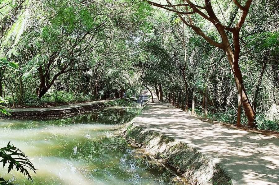 El Bosque dos Buritis está considerado el espacio verde más antiguo