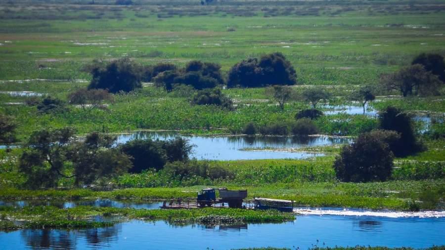 Hermosa vista del pantanal que posee Corumbá