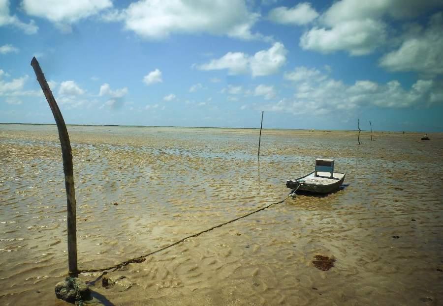 Recorre las playas cercanas a São Miguel dos Milagres