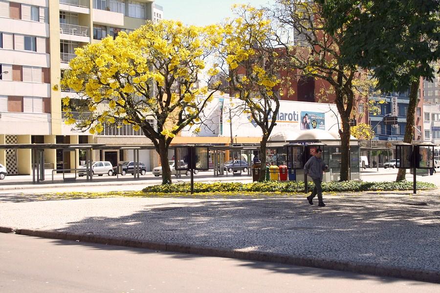 Parque en Curitiba