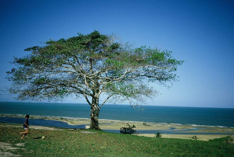 Santa Cruz Cabrália, Bahía, Brasil