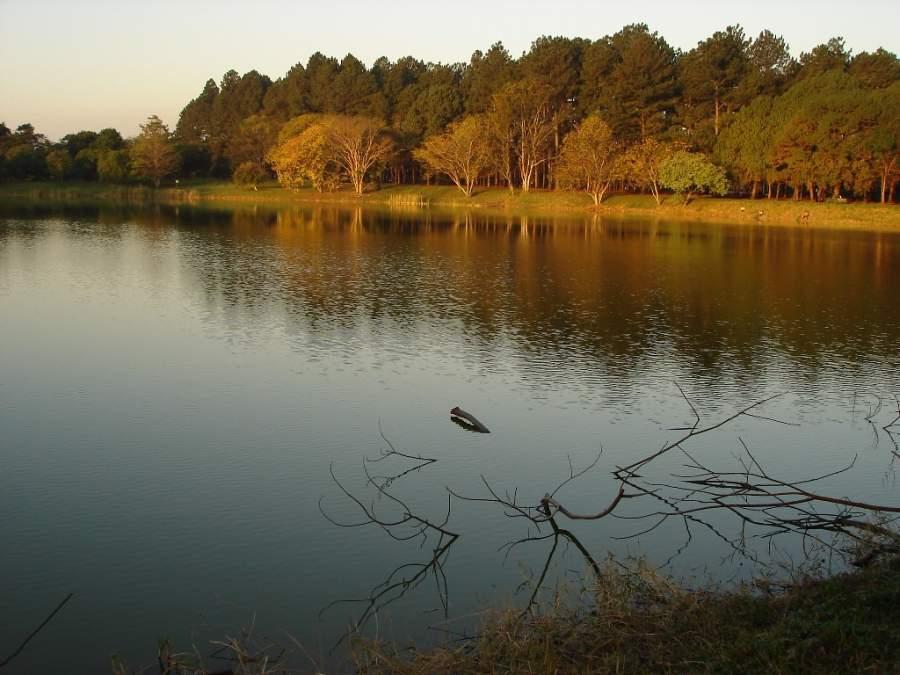 Lago en São José dos Campos