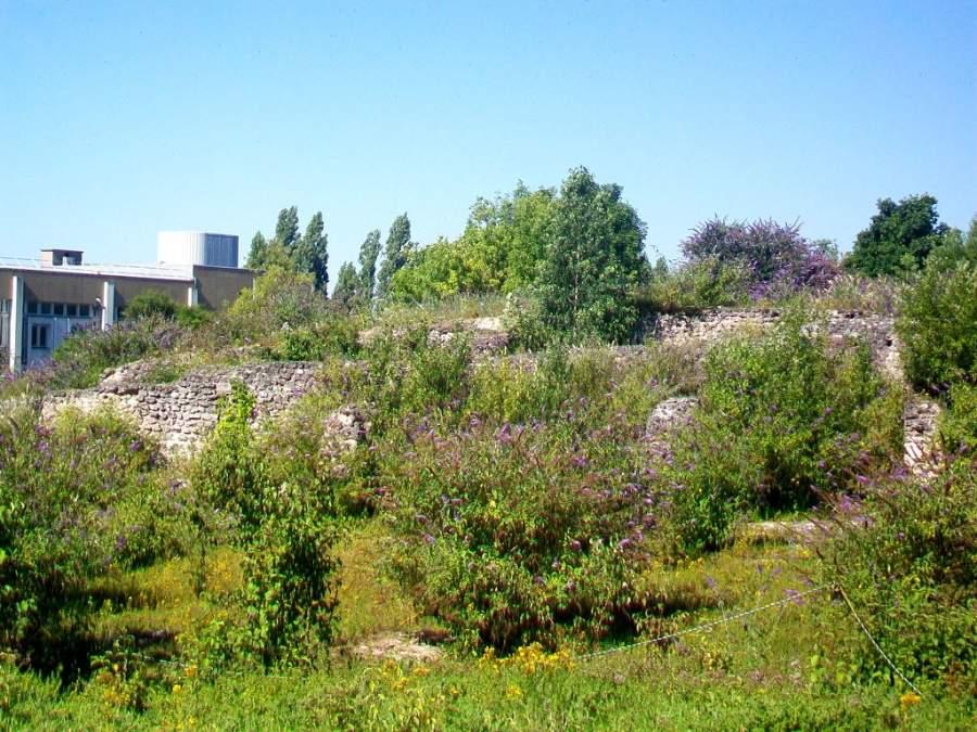 Visita el antiguo santuario de La Bauve en Meaux