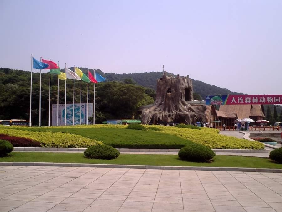 Visita el Zoológico del Bosque de Dalian