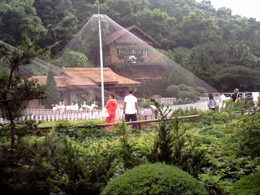 Entra al Parque de Aves en la ciudad de Dalian