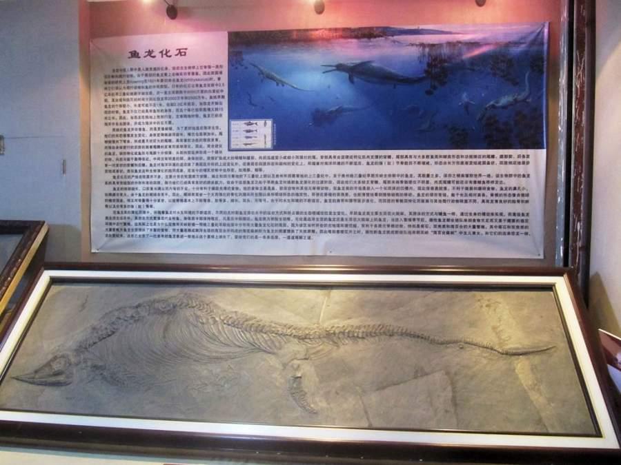 En la isla Liugong hay un museo de la ballena