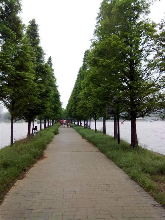 Parque de los Mártires de Hunan en Changsha