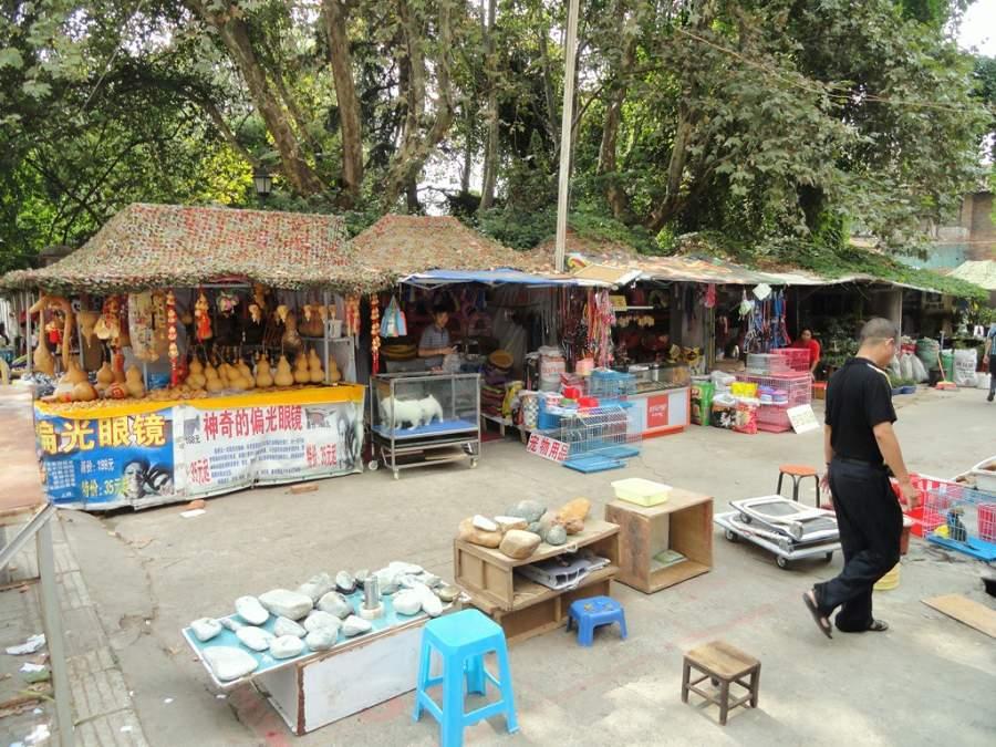 Recorre el Mercado de Flores y Pájaros en Kunming