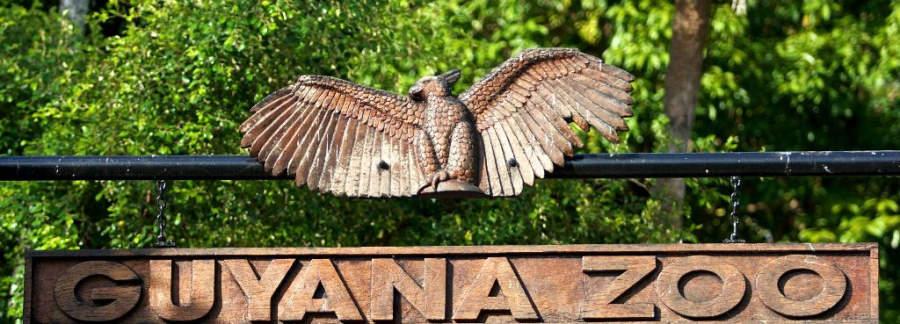 Visita el Zoológico de Guyana en Georgetown