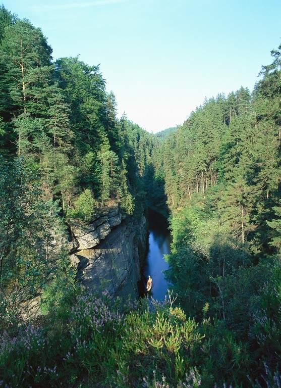 Cañón del río Kamenice en la región de Hrensko