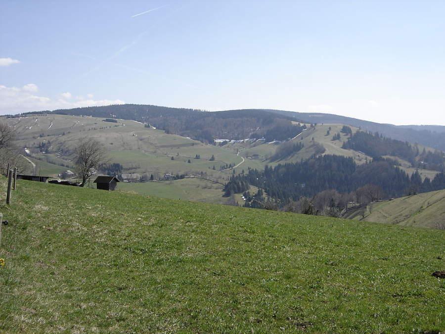 Ve a la montaña Schauinsland y realiza alguna actividad al aire libre