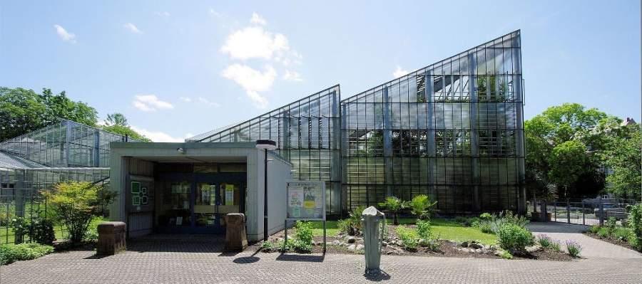 Visita el Jardín Botánico de Friburgo