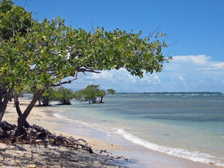 Playa La Guancha