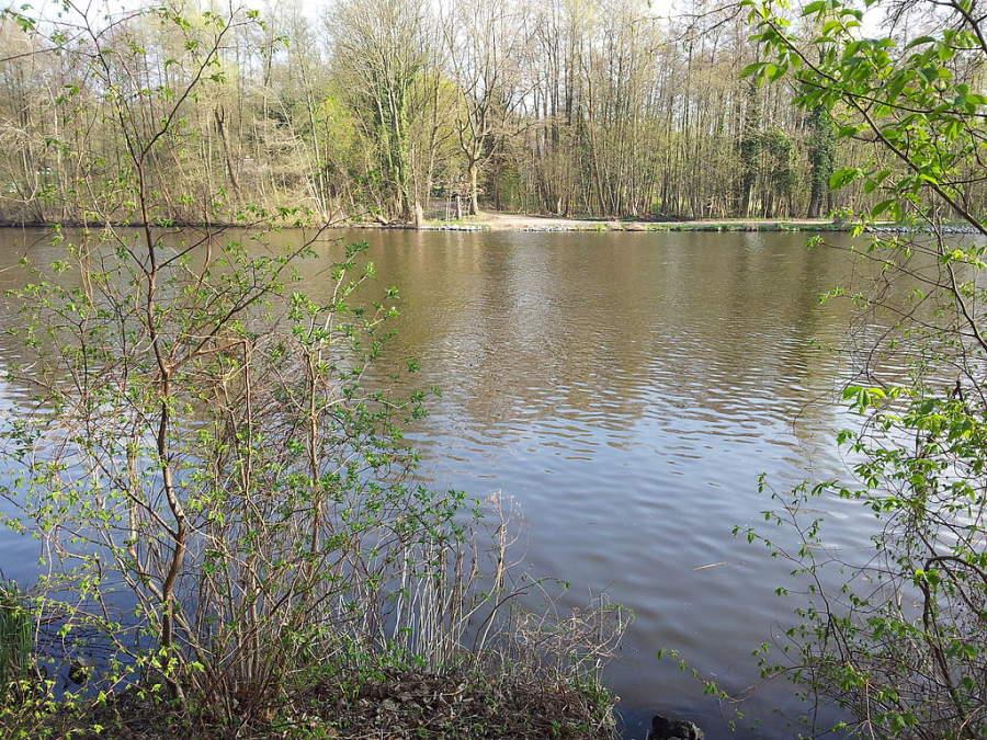 El lago Machnower se forma con las aguas del canal Teltow