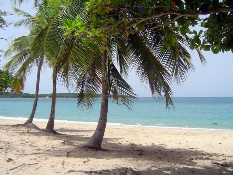 Sun Bay beach, playa famosa en Vieques