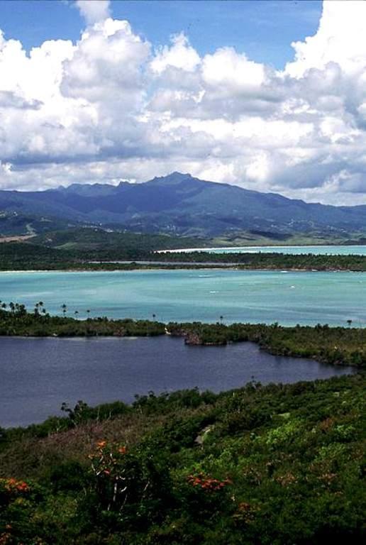 El Yunque es el único bosque lluvioso de los Estados Unidos