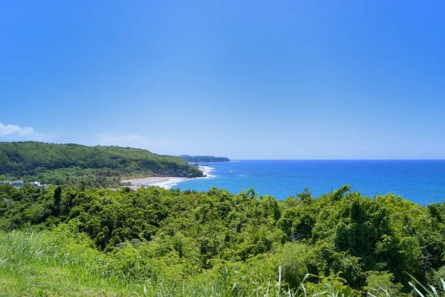 En Carolina podrás disfrutar de playa y abundante vegetación