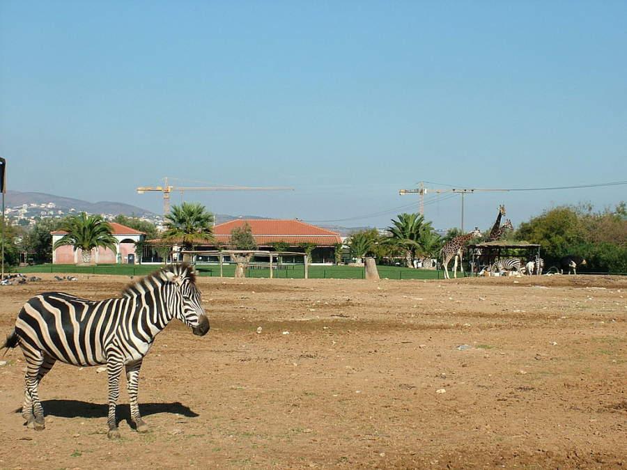 Spata alberga el Parque Zoológico de Ática