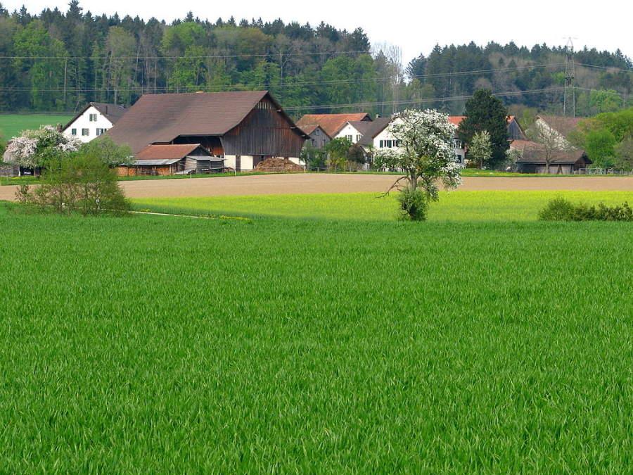Katzenrüti, pequeña aldea en Rümlang