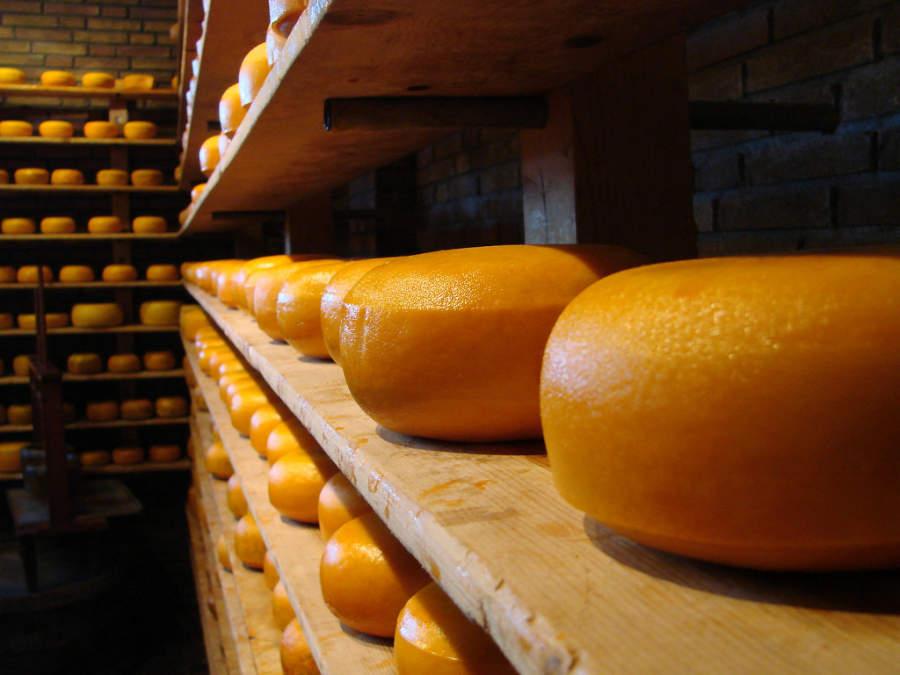 Fábrica de quesos en Volendam