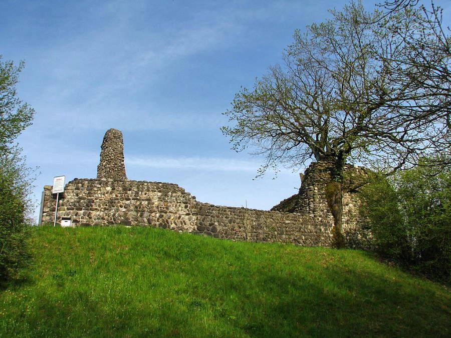Ruinas del Castillo Alt-Regensberg