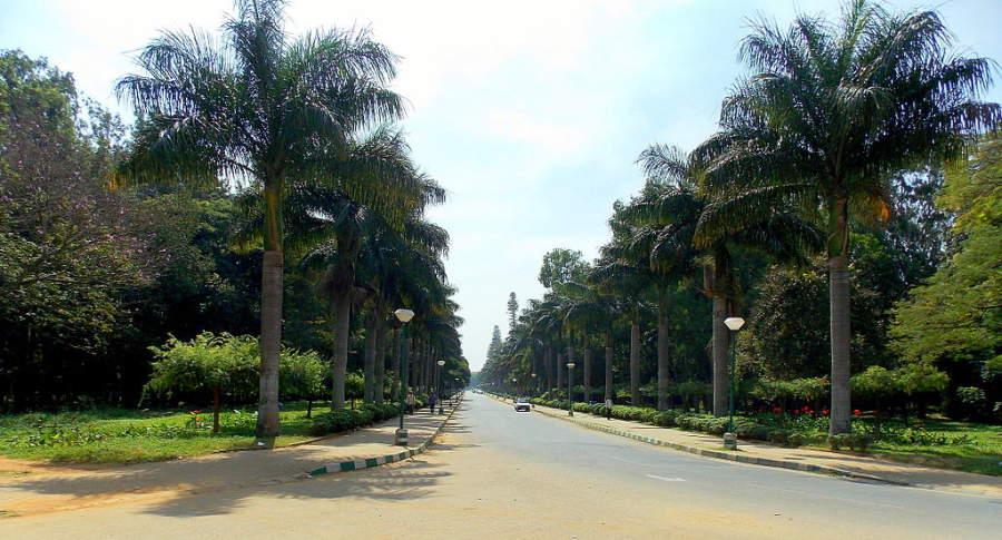 Conoce el Parque Cubbonson en la ciudad de Bangalore
