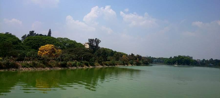 Ve al lago Ulsoor, uno de los más grandes de Bangalore