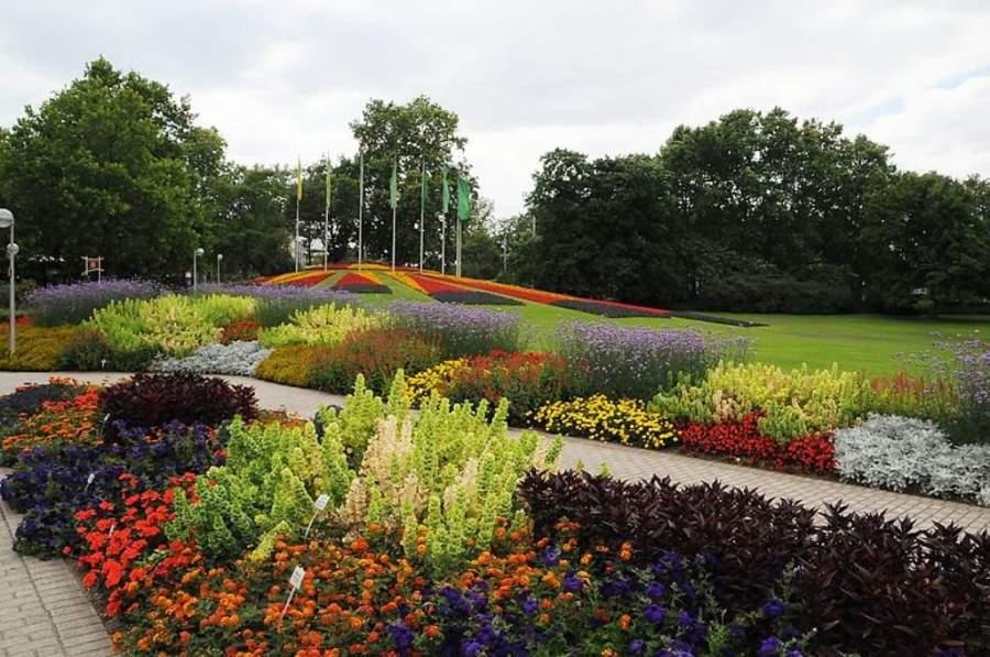 Áreas verdes del Parque Luisen