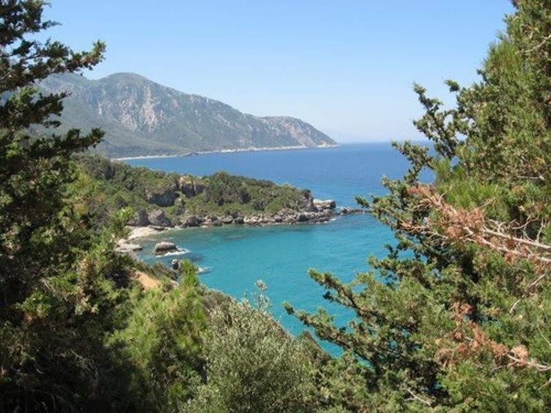 Vista de la península Megalo, bordeada de zonas boscosas