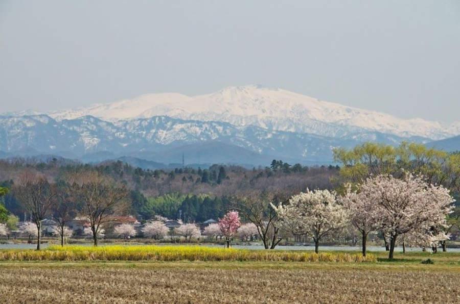 Campos en la ciudad de Komatsu