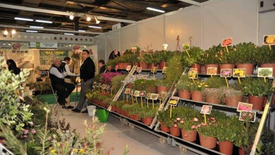 Muestra de plantas en las instalaciones del Centro Mediterráneo de Exhibiciones
