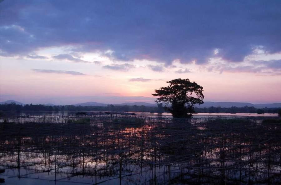 La Reserva Huai Luang es un atractivo natural de la provincia de Udon Thani