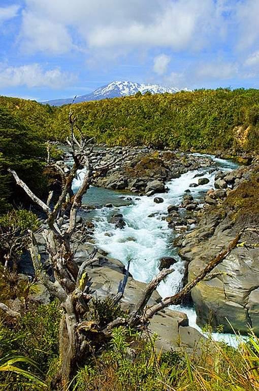 Río en el Parque Nacional Tongariro