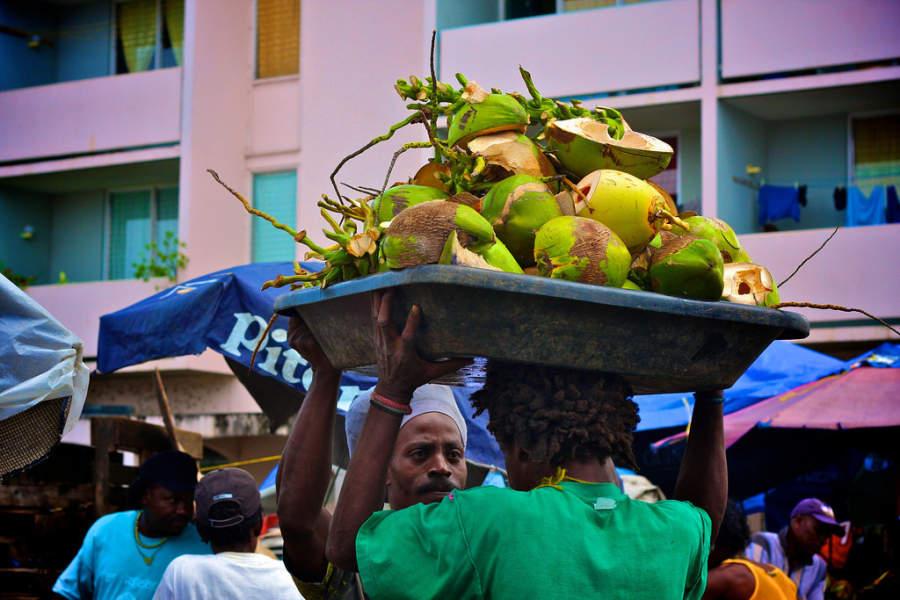 Cocos verdes de la región de Castries, Saint Lucia