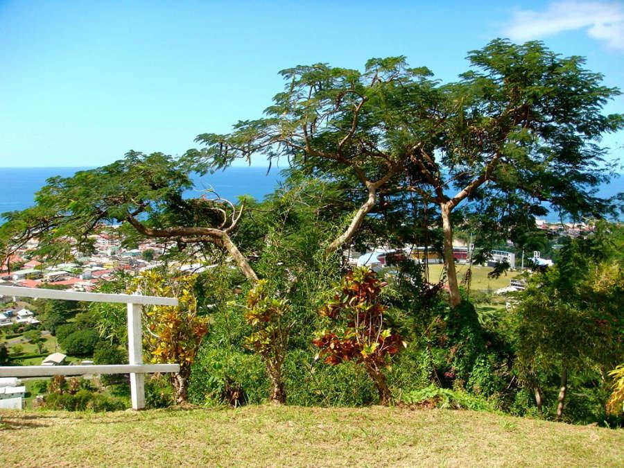 Roseau cuenta con abundante vegetación
