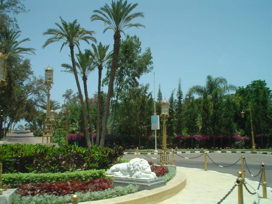 Jardines del Palacio de Montazah