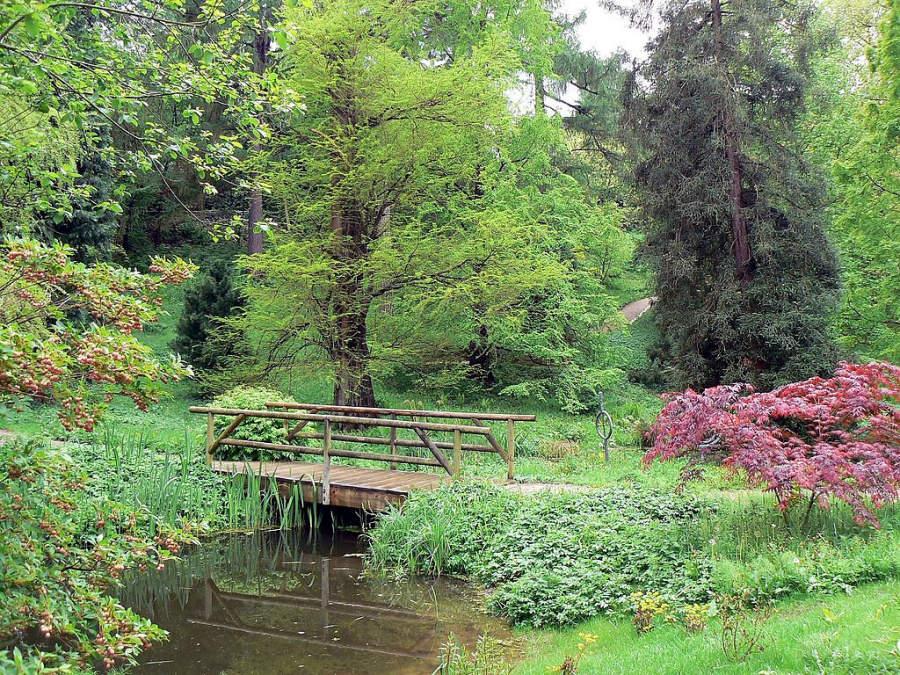 Alter Botanischer Garten Kiel, el viejo jardín botánico de Kiel
