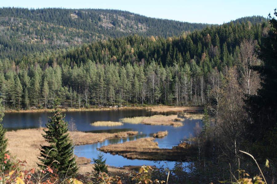 Nordmarka, reserva forestal en Oslo