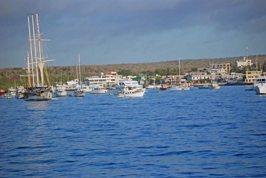 Yates y veleros en Puerto Ayora