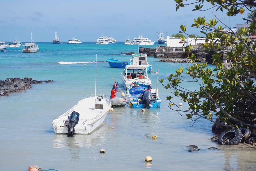 Pesca, actividad económica en Puerto Ayora