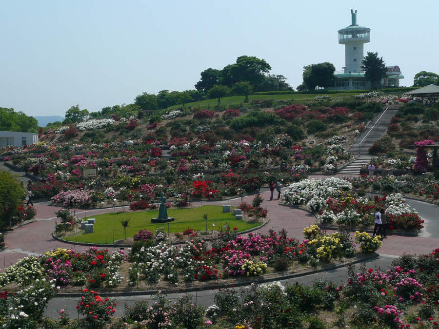 Vista panorámica del Jardín de Rosas