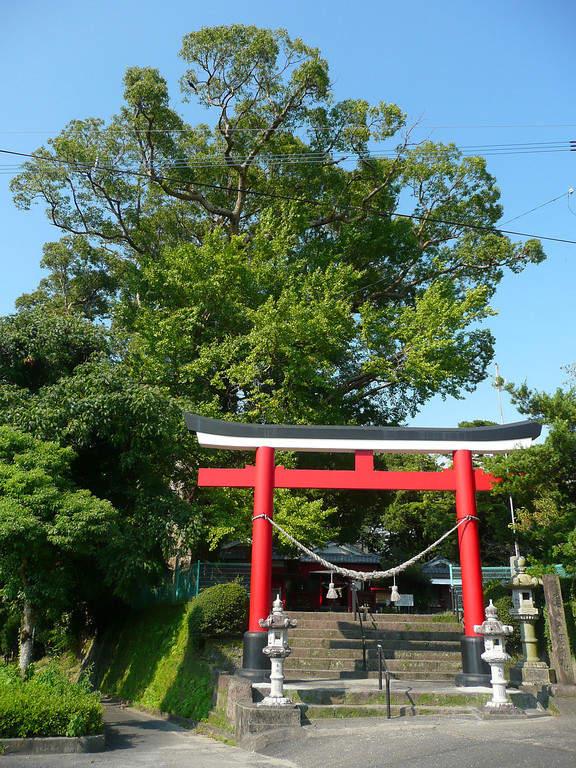 Santuario Nanakariosa Tanuki