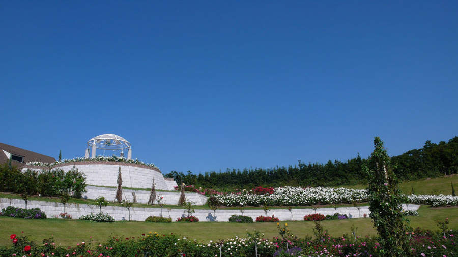 Jardín de Rosas de Kanoya