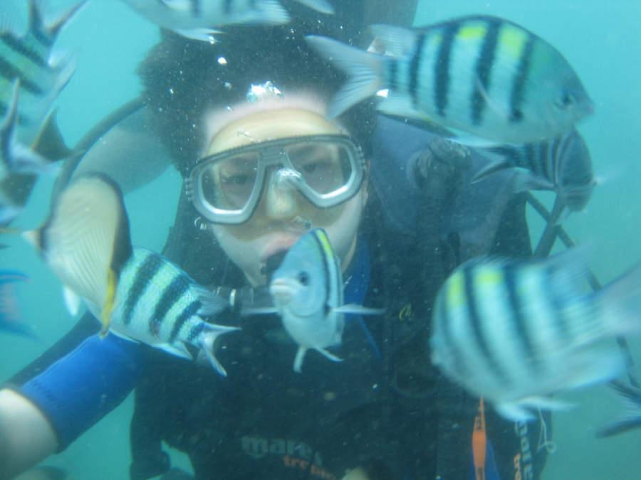 Benoa ofrece sitios ideales para practicar buceo